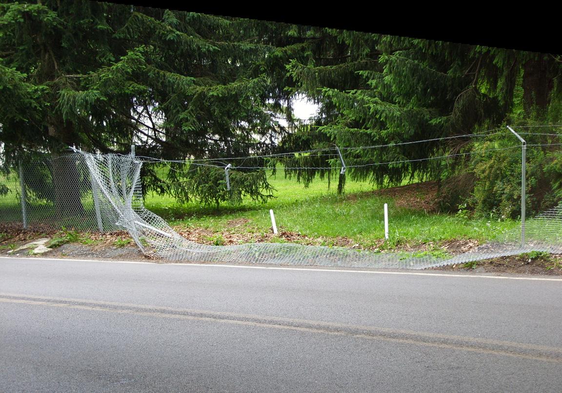ss850053-stitchweb